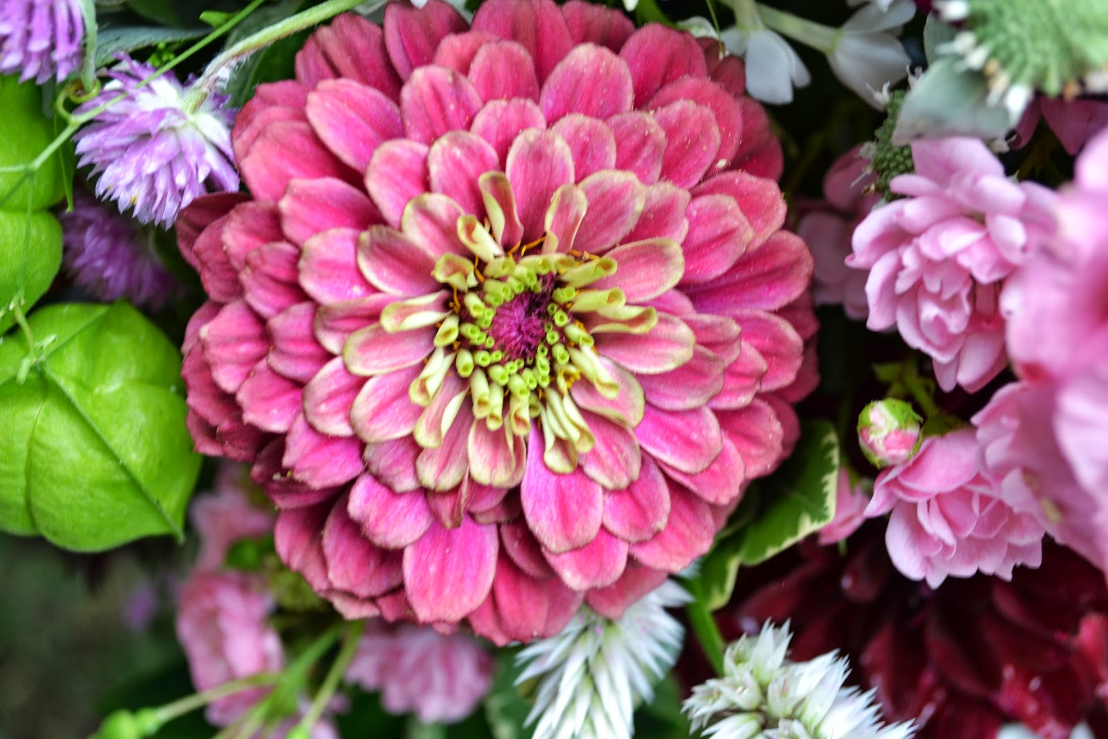Wedding Flowers from Springwell Zinnia and Dahlia Centerpiece In Jewel Tones