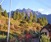 Mount Kinabalu Botanical Garden
