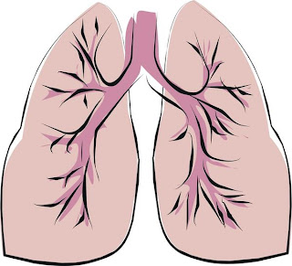 Nursing Care Plans: Risk for Infection Care Plan COPD