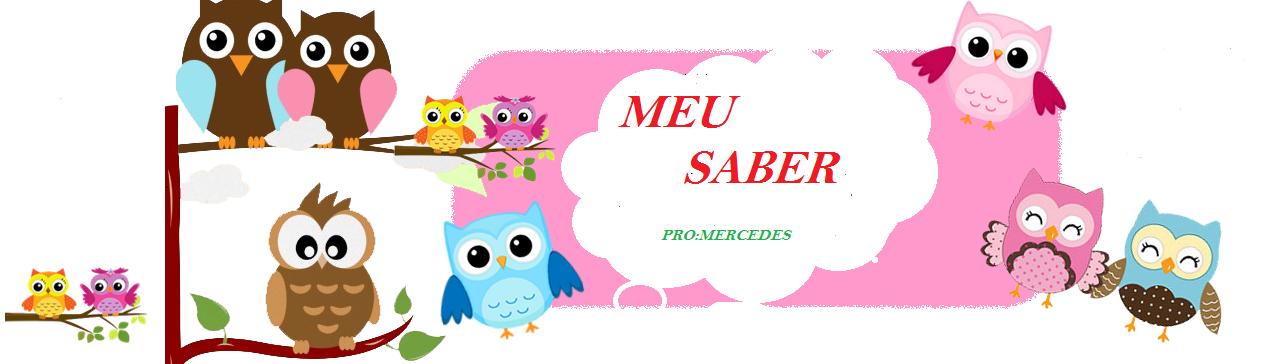 Meu Saber