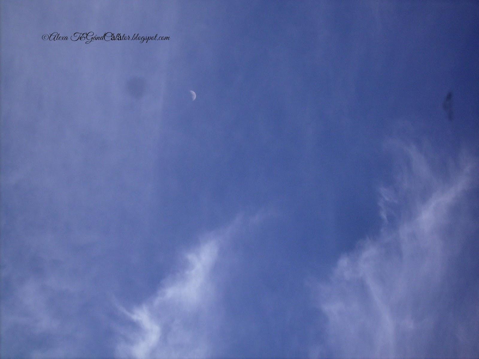 """First quarter of the moon. Primul patrar. """"Primul Pătrar - când Luna este la o elongatie (depărtare) de 90° est, față de Soare;  atunci vedem doar jumătate din discul lunar iluminat (jumatatea din dreapta).""""http://www.space.com/ """"Weather permitting, you can see this for yourself this week because the first quarter falls on Friday (March 27) at 3:43 a.m. EDT (0743 GMT)."""""""