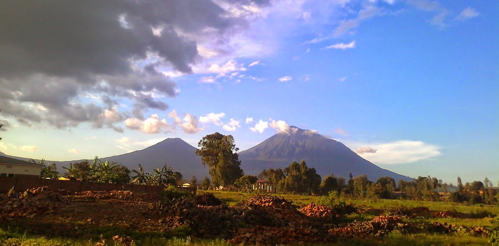 A l'ombra de les Virunga