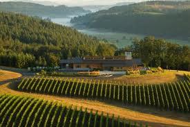 オレゴン ワイン ペナーアッシュ