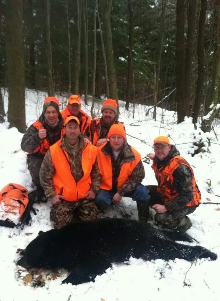 pennsylvania black bear