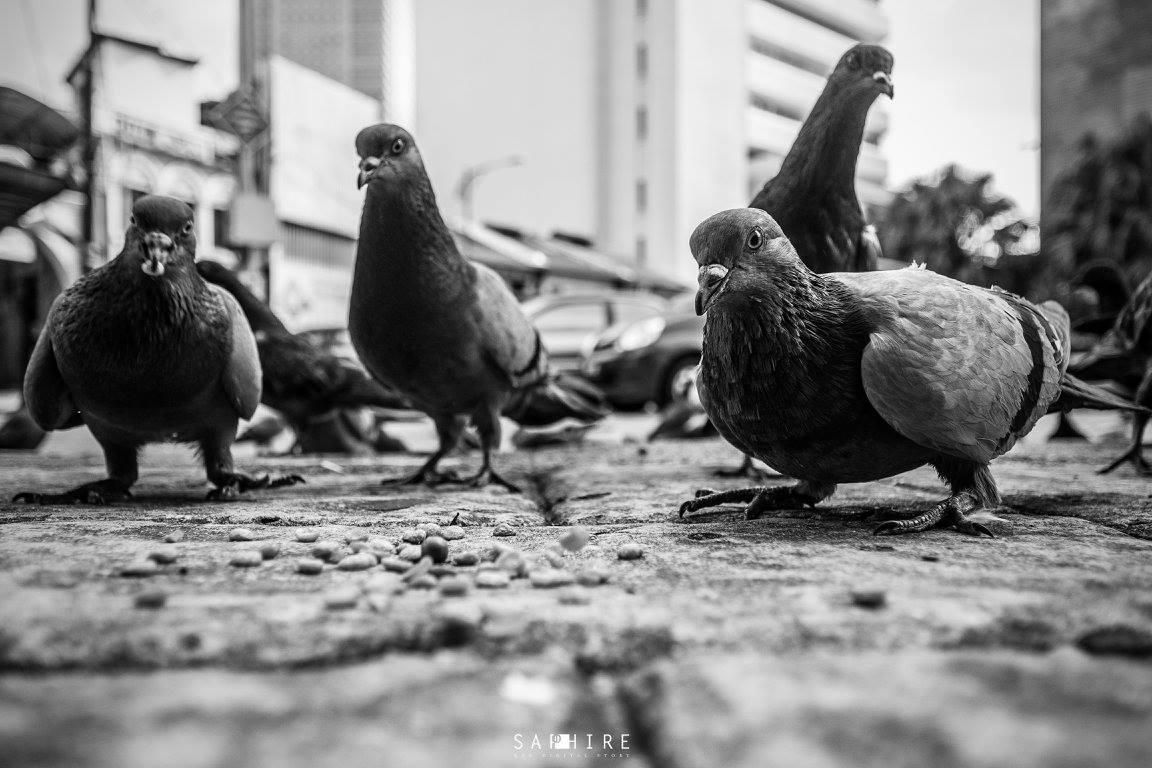 街拍摄影作品