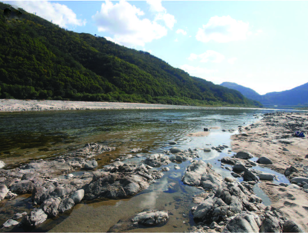 This image show one of the gorgeous habitats of the water mites, the Inje River, South Korea. Credit: Vladimir Pešić
