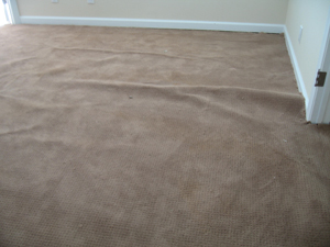having walltowall carpeting offers distinct benefits but sometimes walking on it can become hazardous and its appearance can deteriorate due to buckling
