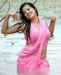 Wet Saree Photo Collection