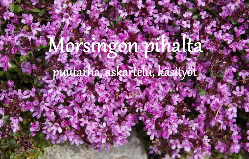 Morsingon pihalta
