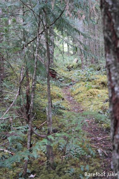 Baldy Trail