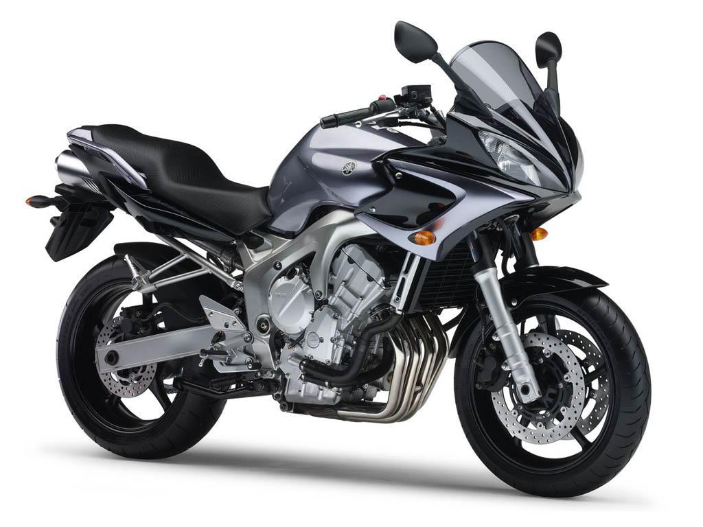 Yamaha Fz D Model
