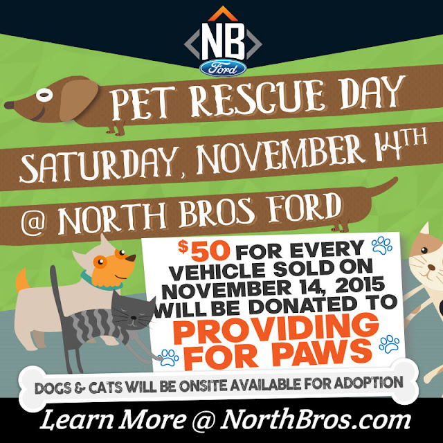Bowwow: Pet Rescue Day at North Brothers Ford