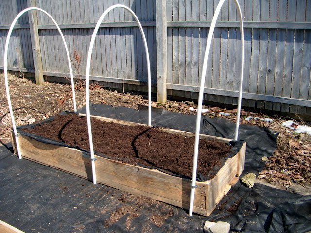1868 Pleasant Pvc Hoop Greenhouse For Raised Garden Beds