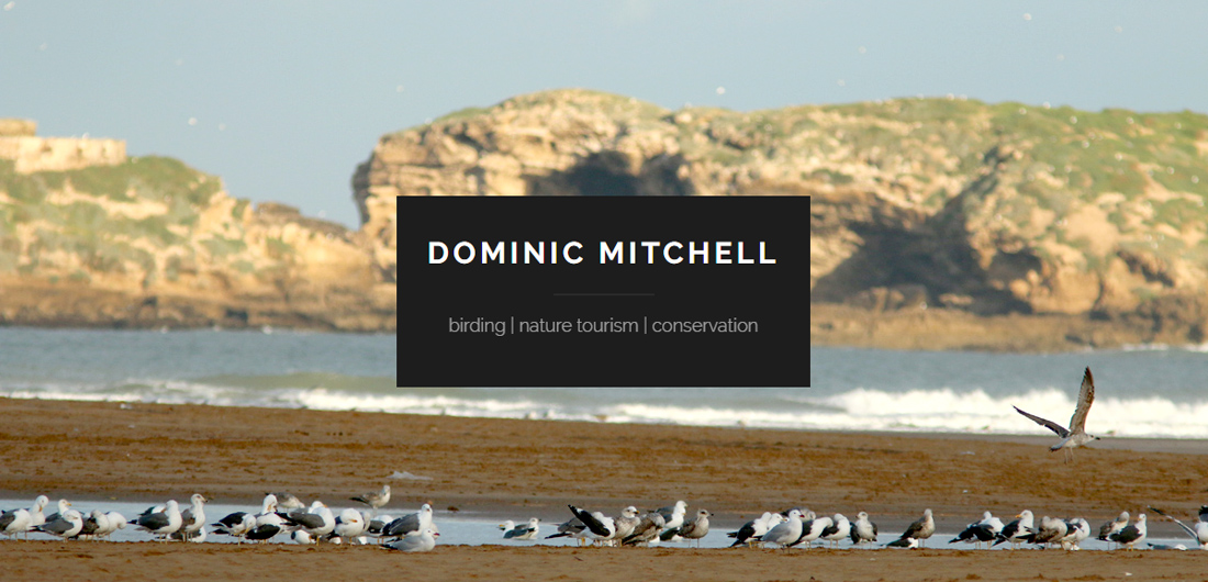 Birding etc with Dominic Mitchell