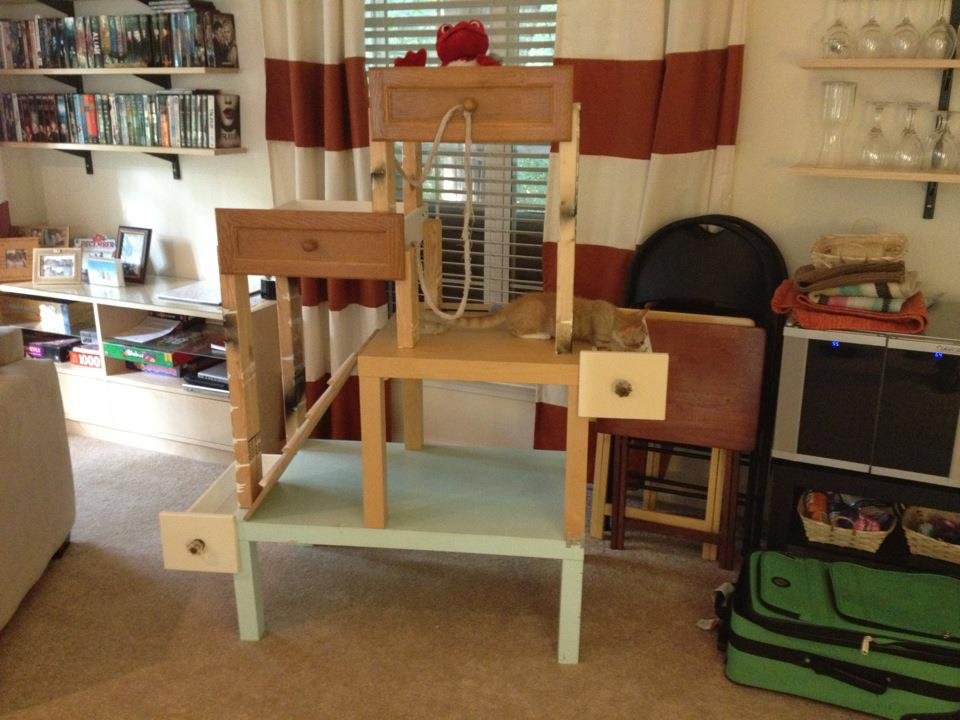 For The Home On Pinterest Cat Trees Beds And