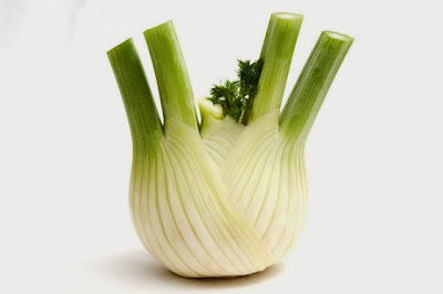 Low carb vegetables? - Page 3 Fennel+3