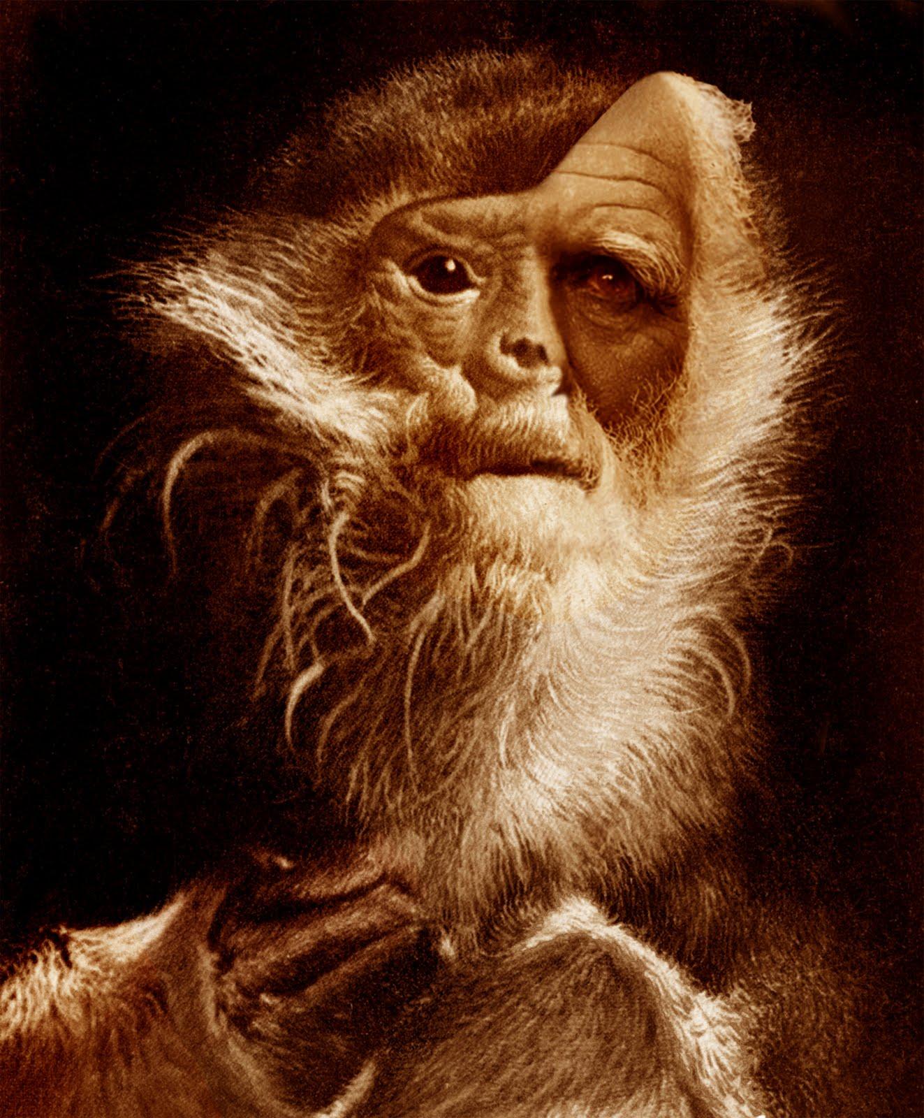 Charlse Darwin.