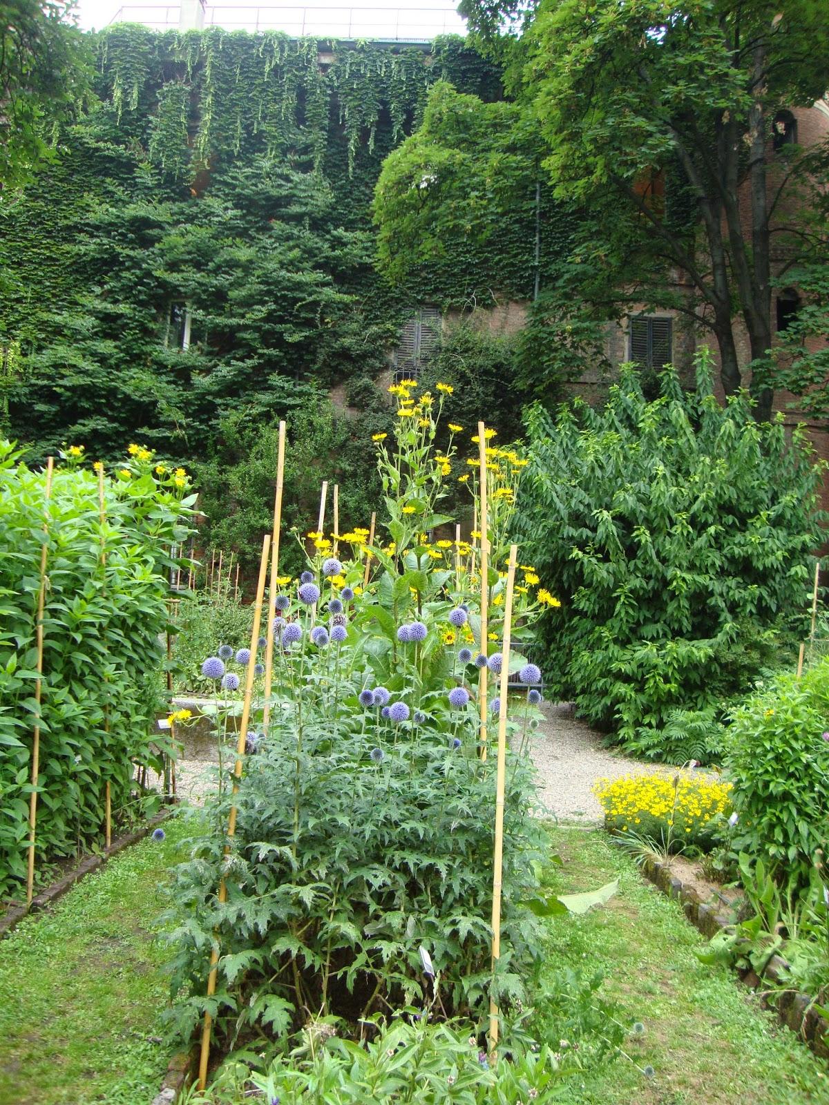 Idee per orto e giardino for Idee giardino piccolo