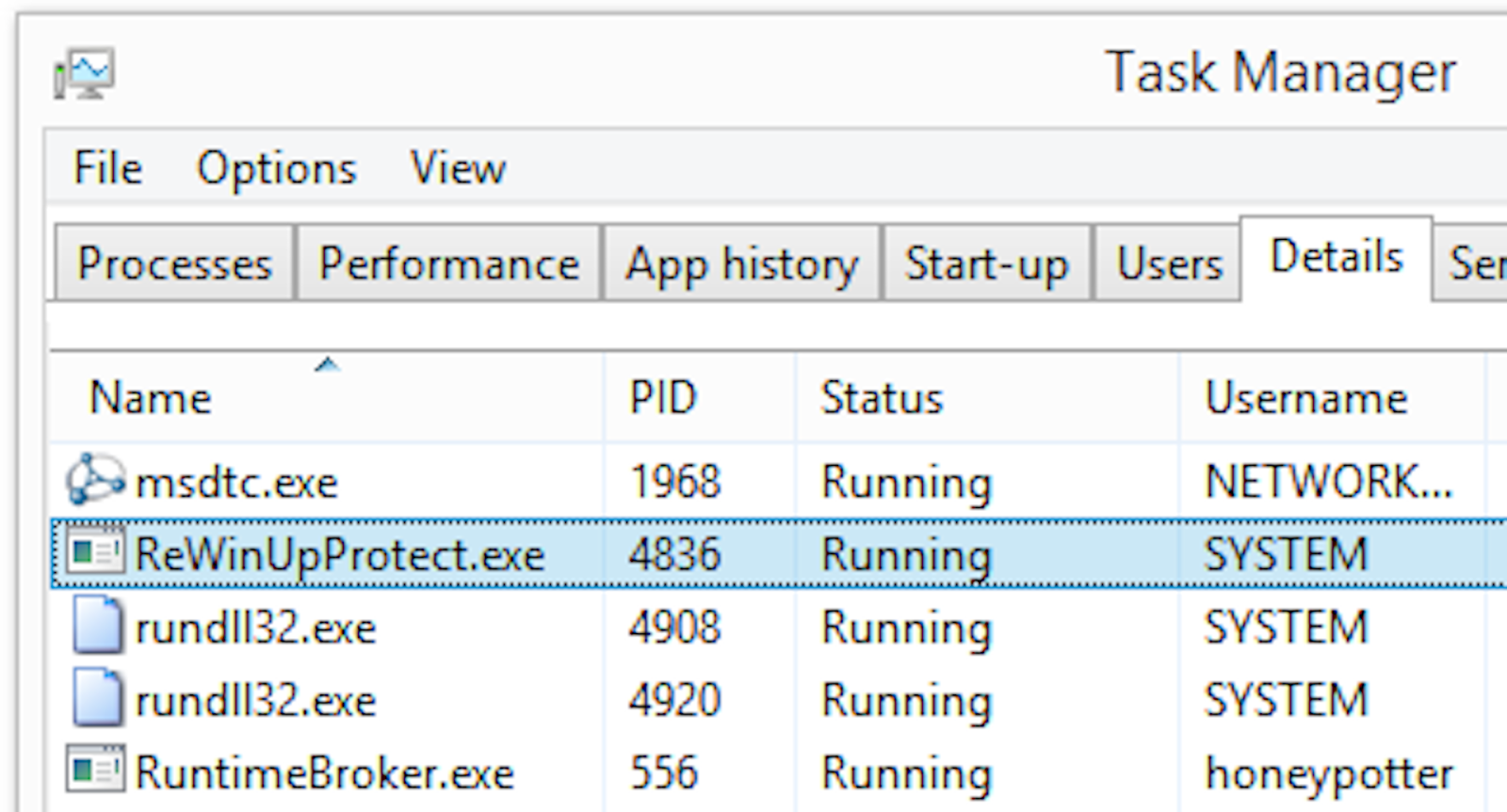 ReWinUpProtect.exe in the Windows Task Manager