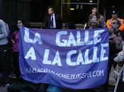 BANDERAS POR LA GALLE