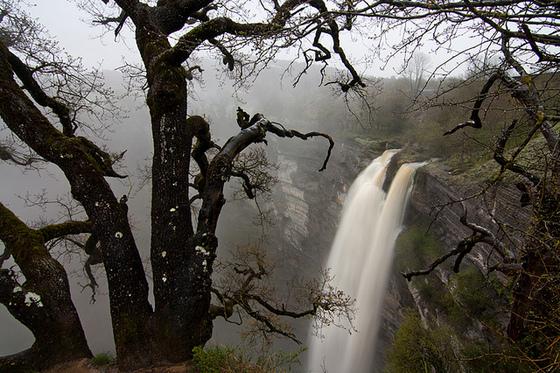 imagen_burgos_monte_santiago_salto_nervion_hayedo_mirador_vistas_cascada