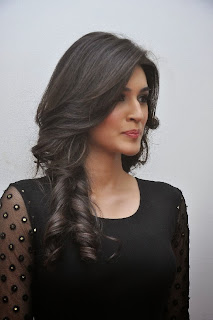 Actress Kriti Sanon Picture Gallery in Black Dress at 1 Nenokkadine Movie Audio Launch Function 0005.jpg