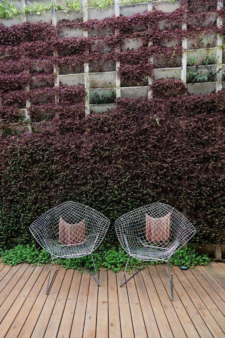 Jardines verticales como se hacen como hacer un jardin for Como se hace un jardin vertical