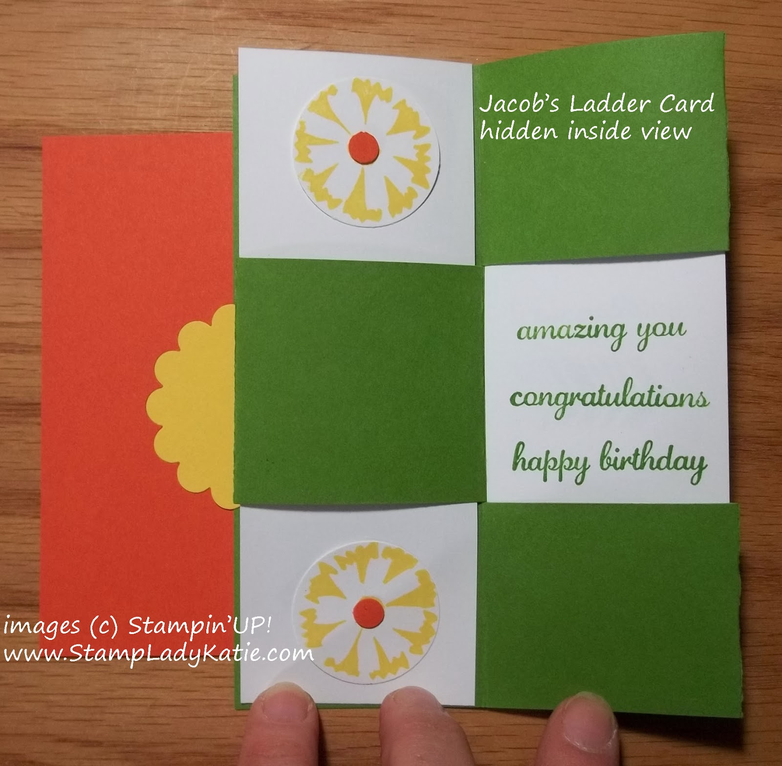 Jacob's Ladder Secret Message Card made with Stampin'UP! Petal Parade Stamp Set