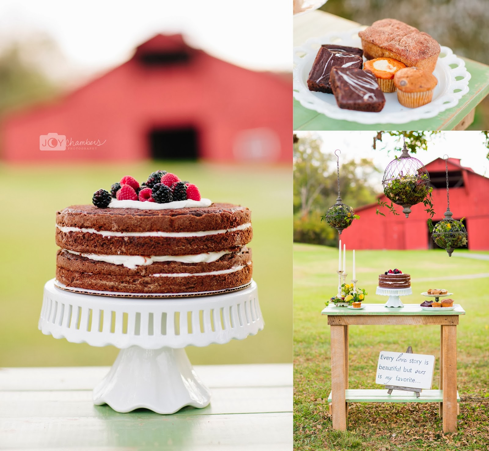 Joy Chambers Photography: Farm To Table | Rutherford County Style ...
