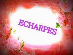 ECHARPES EM TRICÔ