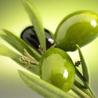 ماسكات طبيعية بزيت الزيتون للحفاظ على بشرتك