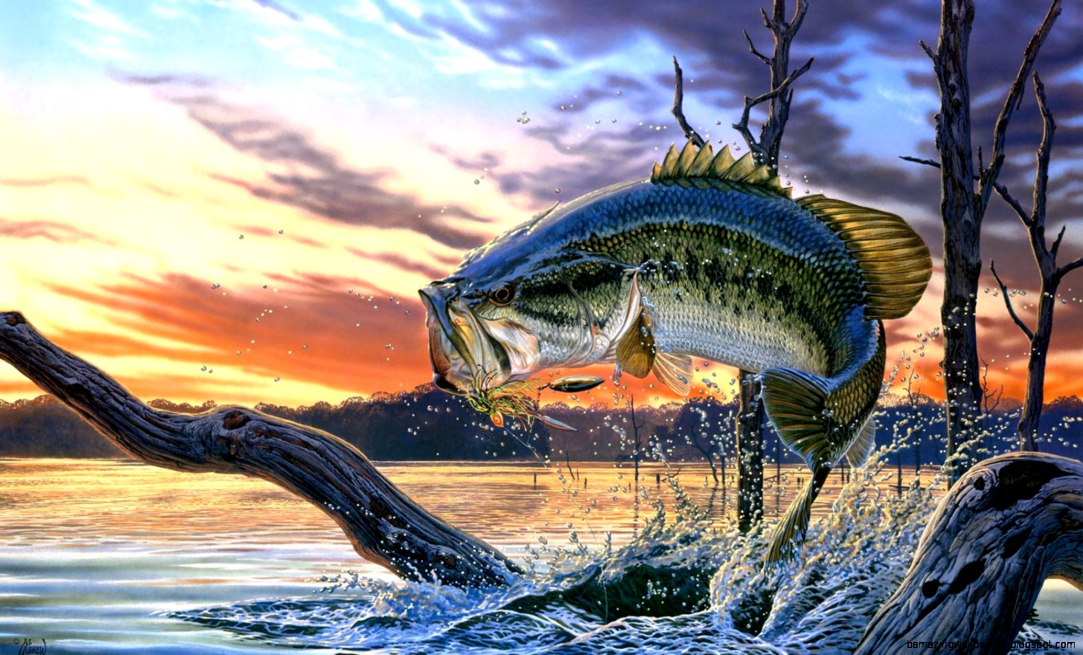 fishing lure wallpaper - photo #23