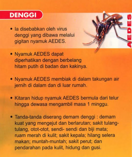 Tanda-tanda demam denggi