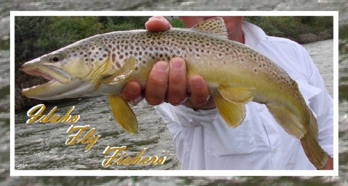 Idaho Fly Fishers | Idaho Montana Fishing | Fly Fishing Trips, Idaho