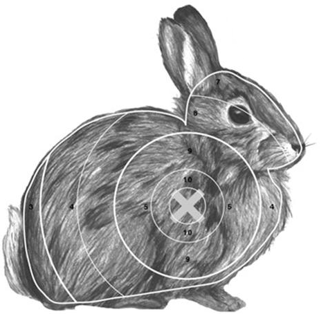 image regarding Printable Animal Targets called Venture Gridless: Varied Paper Archery Goals