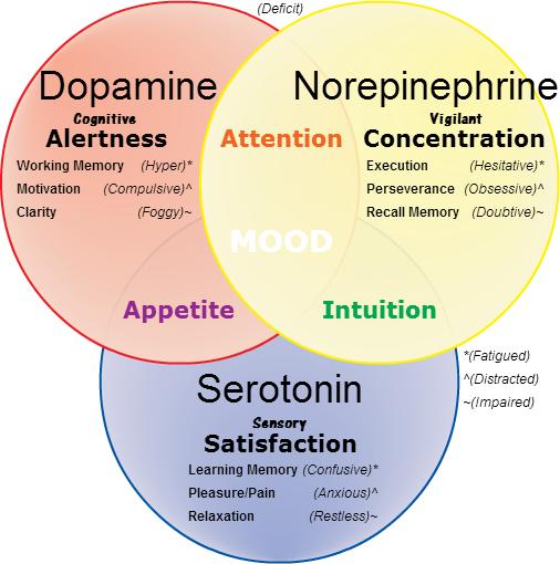 Top 5 Brain Supplements - Brain Center