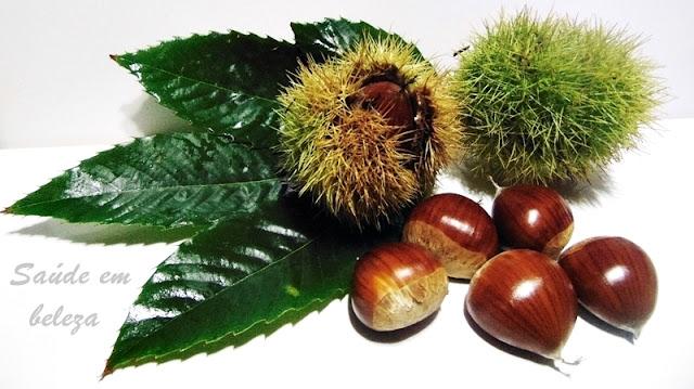 Benefícios e propriedades das castanhas para a saúde