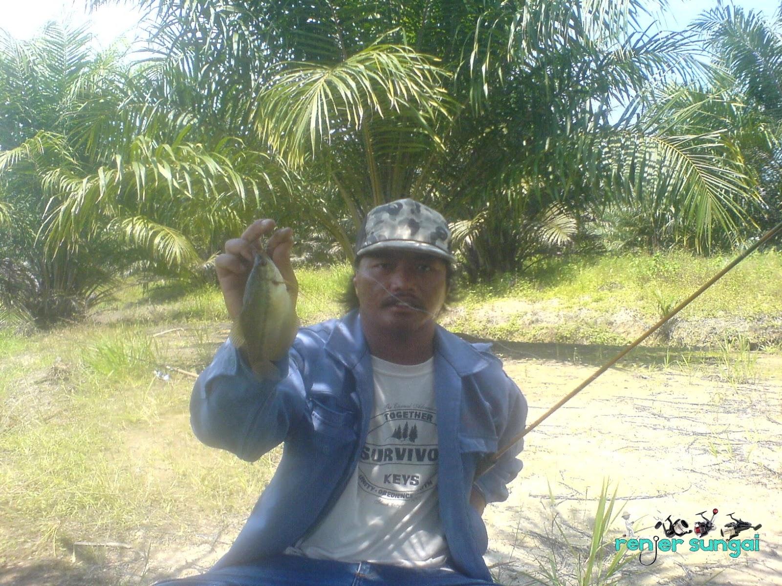 http://3.bp.blogspot.com/-FMTUKgNwunU/Tz0qrrRFdJI/AAAAAAAADpg/LMdhEGAt8oI/s1600/DSC02611.JPG