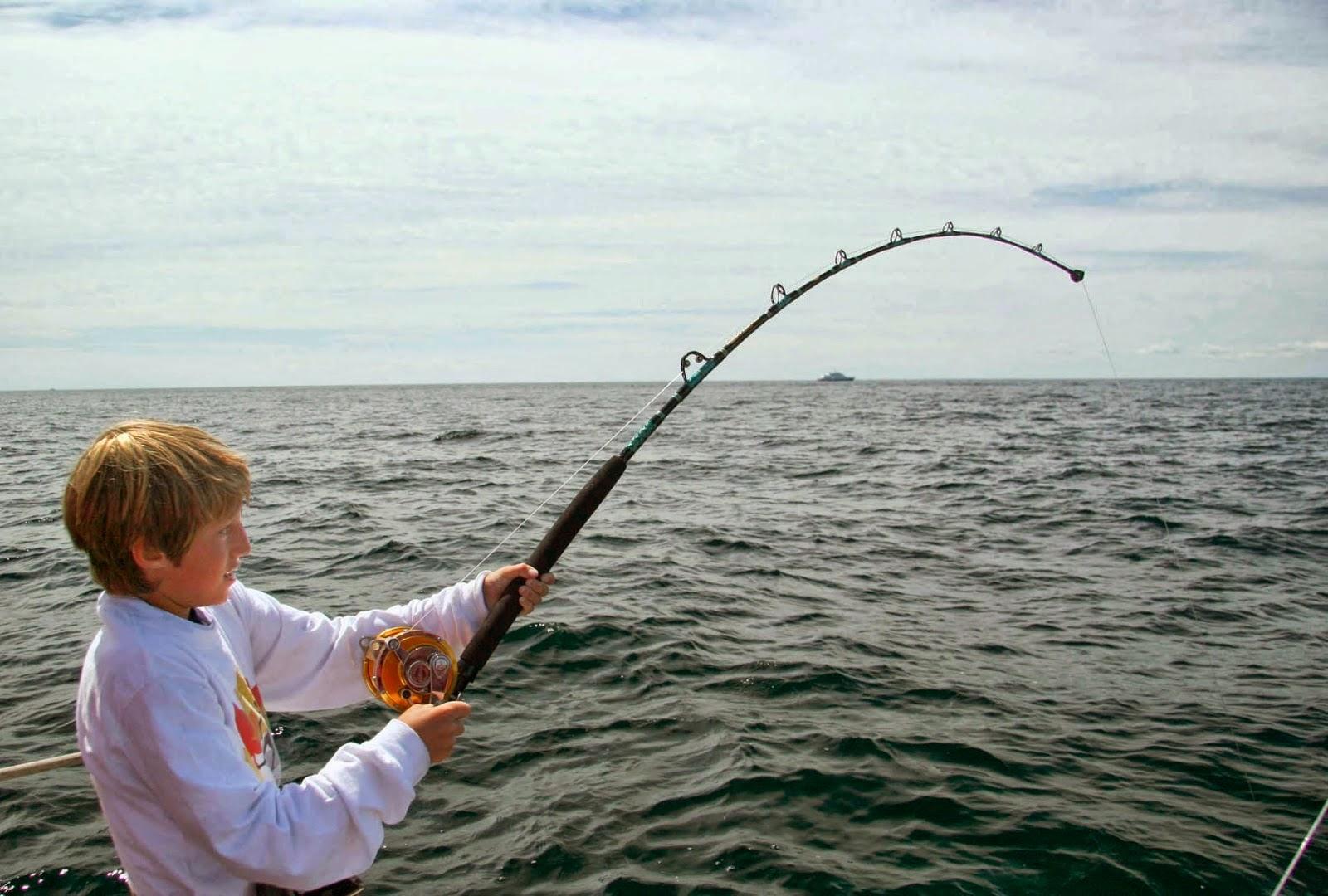 Hướng dẫn làm mồi câu cá dìa
