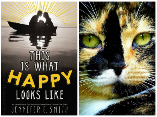 In Which I Pair the Best Summer Reads to the Cutest Cats