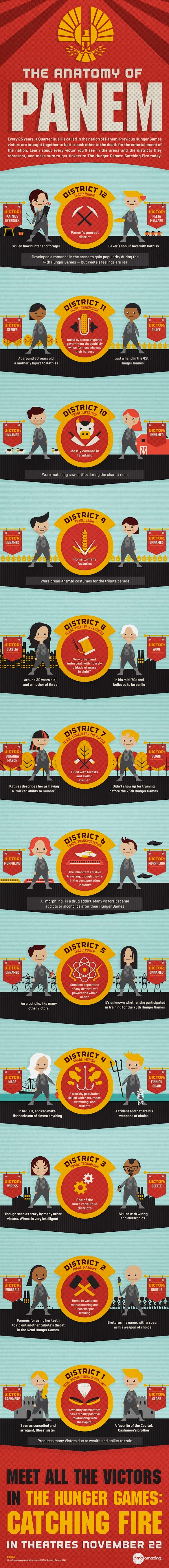Infographic about Hunger games catching fire