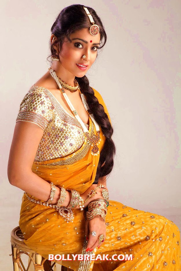 Shriya saran in Traditional Saree - Shriya saran in Traditional Sarees