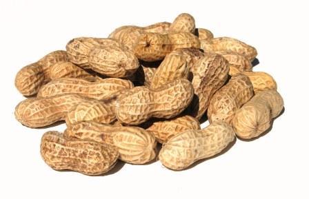 peanuts+recipe