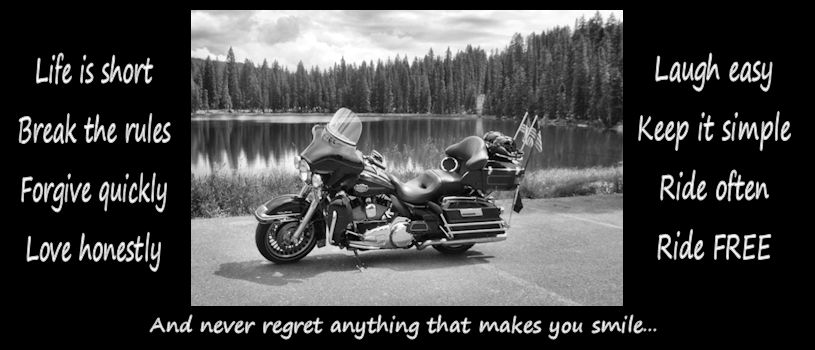 Harley Davidson Quotes Amazing Our Harley Days Biker Quotes