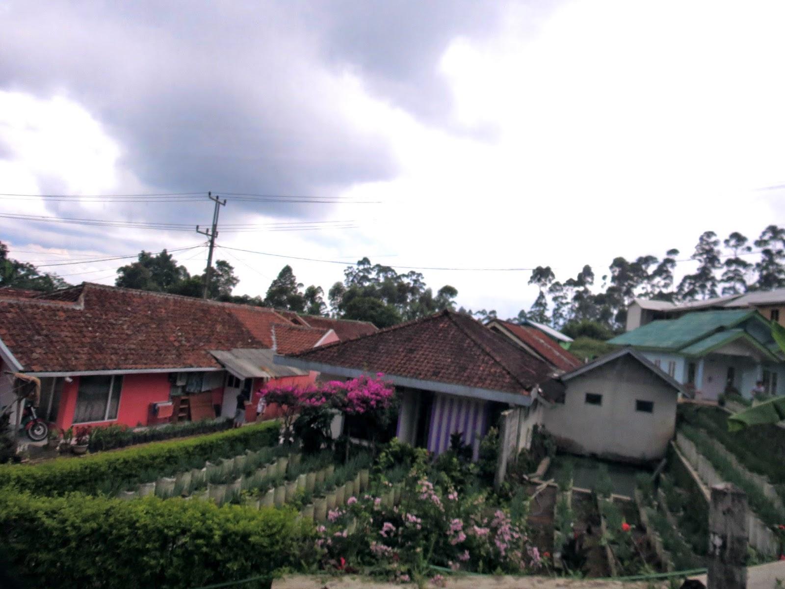 Bandung fields