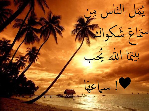 خالص حبى وتقديرى للمصريين واللى بيحبوا مصر