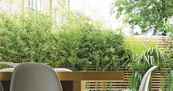 Rustik chateaux ejemplo de como dise ar un peque o jard n for Como disenar un jardin pequeno exterior