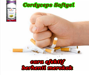 Cordyceps softgel