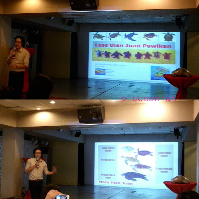 Dr. AA Yaptinchay, D.V.M., MSc., Founder and Director of Marine Wildlife Watch of the Philippines.