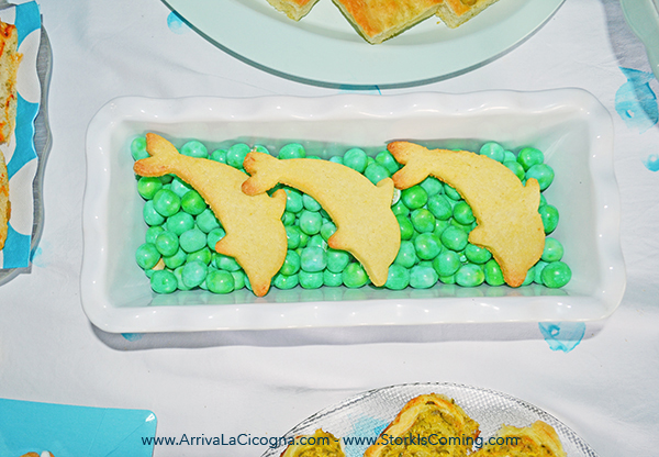 dolphin biscuits at underwater party